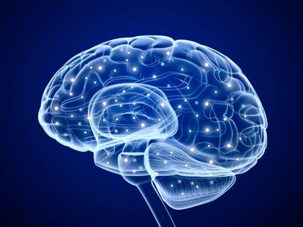 Neuromodulation; 3d; anatomy; artwork; axon; axone; biology; brain; brainstorm; cell; coagulate; cut; dendrite; electron; encephalon; energy; flowing; golgi; graphic; illustration; inside; macro; magnification; medical; medicine; mental; micro; microbiology; microscopic; mind; motor; nerve; nervous; neural; neuro; neurology; neuron; nucleon; nucleus; pulse; receptor; rendering; science; sensory; signal; synapse; system;