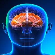Peripheral Nerve Field Stimulation (PNFS)-1